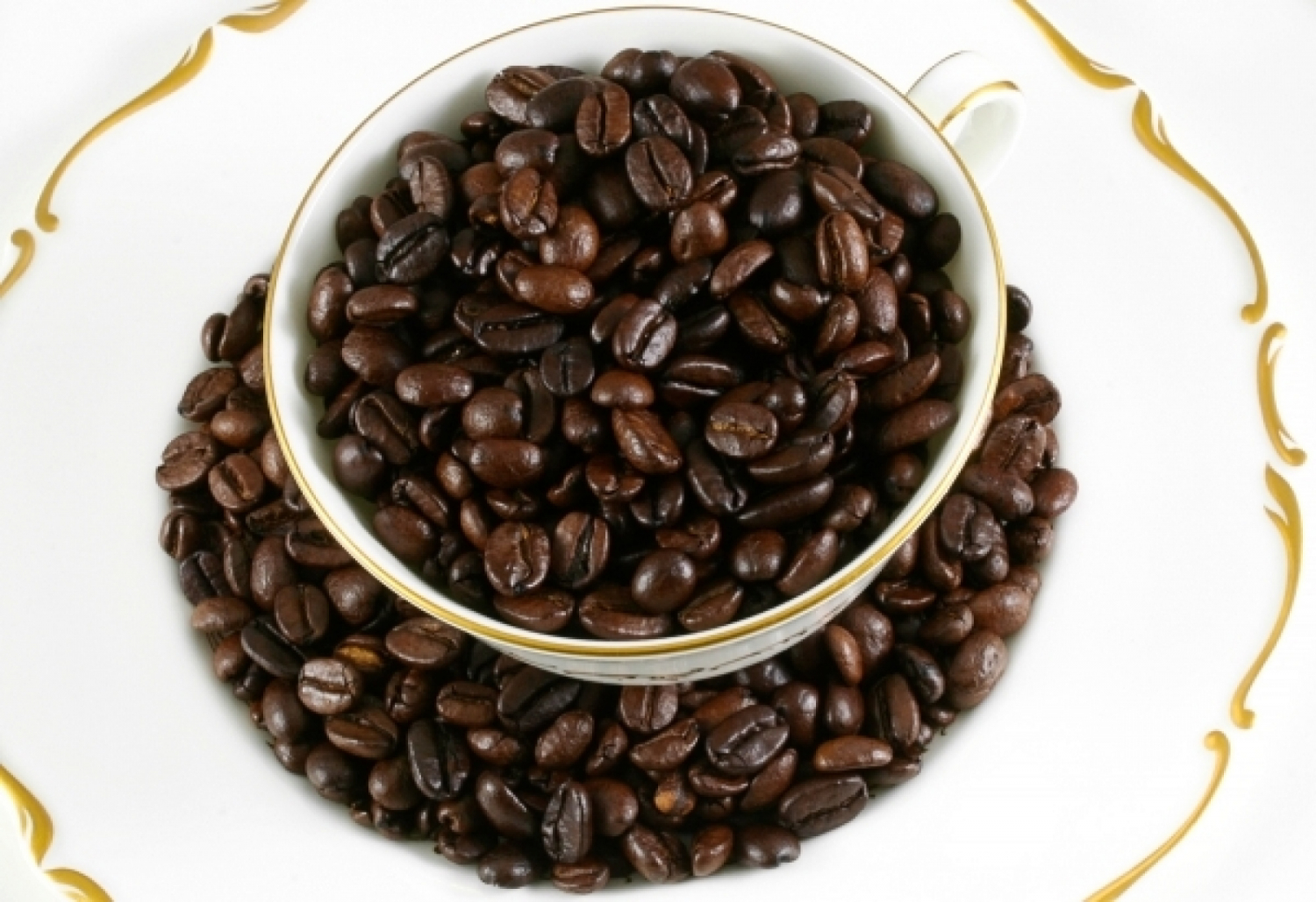 Best Dark Roast Coffees - Lists and Reviews for 2017