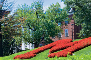 Smith Among Top 10 Online MBA Programs in 2018