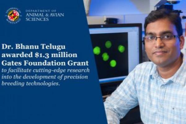 Gates Foundation Grant Awarded to Dr. Telugu