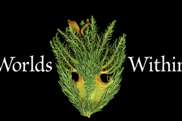 """Jan. 23 """"Worlds Within"""" Art Exhibition and Lecture by Rob Kesseler"""